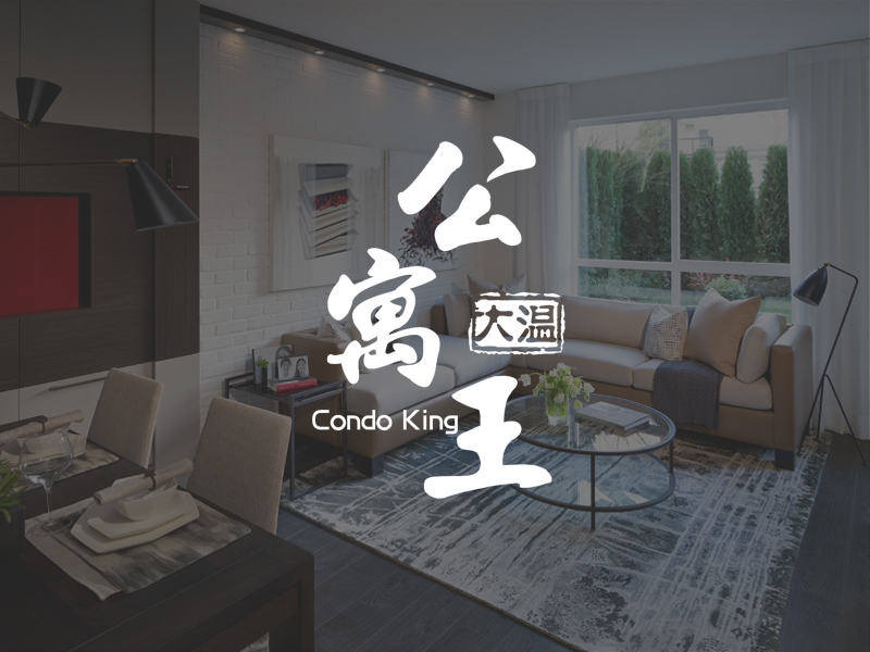 Condo King Projects