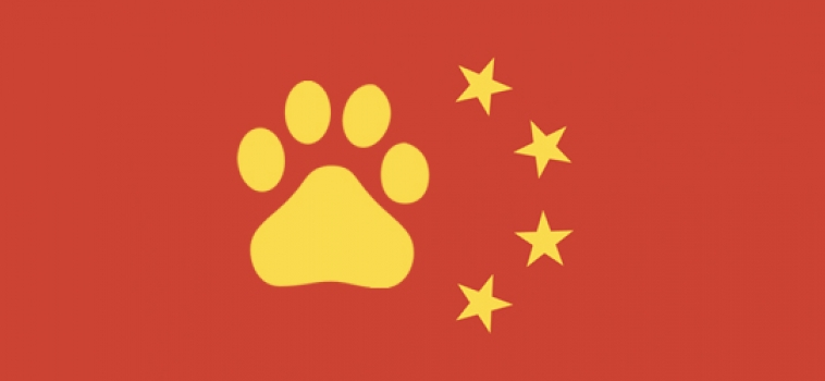 Search Engine Marketing in China = Success